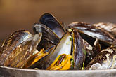 horizontal stock photography | Belgium, Brussels, Steamed mussels, image id 8-746-2755