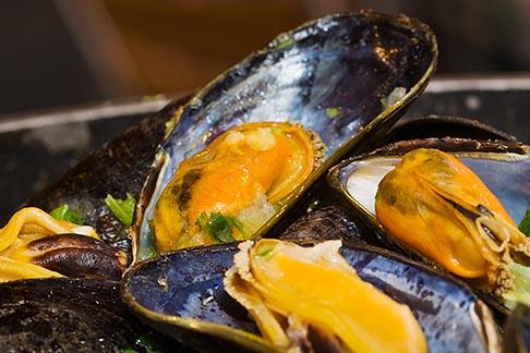 image 8-746-2772 Belgium, Brussels, Steamed mussels