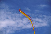 kite flying stock photography | California, Berkeley, Berkeley Kite Festival, image id 0-501-11
