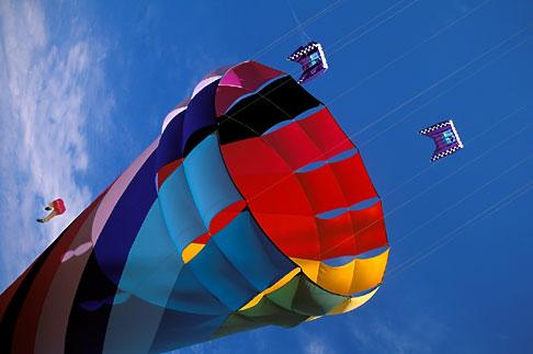 image 0-501-26 California, Berkeley, Berkeley Kite Festival