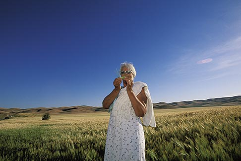 image 1-381-13 California, San Luis Obispo County, California Valley, field