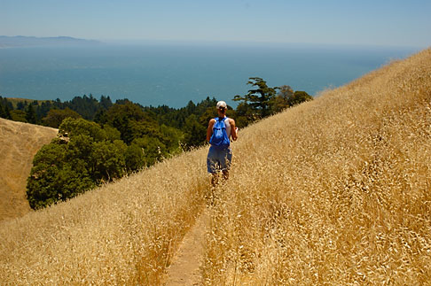 image 1-870-2597 California, Marin County, Mount Tamalpais State Park, hiker, Coastal Trail
