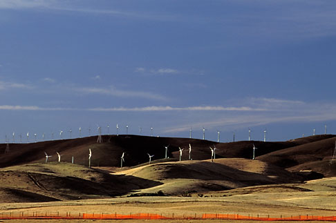image 2-179-17 California, Contra Costa, Windmills near Byron