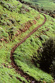shaped stock photography | California, East Bay Parks, Bay Area Ridge Trail south of Tilden Park, image id 3-67-27