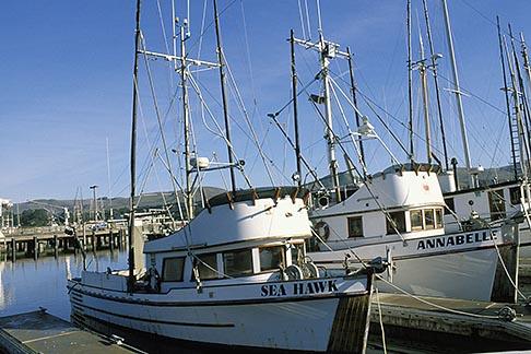 image 4-561-60 California, Bodega Bay, Fishing boats, Bodega Harbor