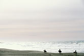 image 4-562-18 California, Bodega Bay, Horseback riding on the beach, Bodega Dunes