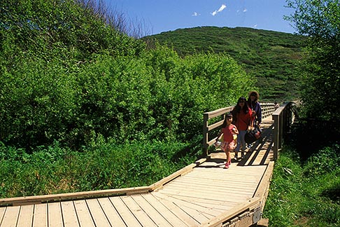 image 4-700-58 California, Marin County, Muir Beach, GGNRA, Boardwalk