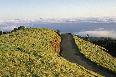 image 4-702-6 California, Marin County, Mount Tamalpais State Park, Pantoll Road
