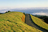 open road stock photography | California, Marin County, Mount Tamalpais State Park, Pantoll Road, image id 4-702-6