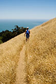 hill stock photography | California, Marin County, Mount Tamalpais State Park, hiker, Coastal Trail, image id 4-720-2598