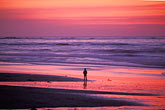 man on beach stock photography | California, Pacific Grove, Asilomar State Beach, sunset, image id 4-987-9