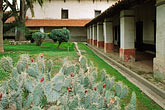 horizontal stock photography | California, Missions, Cactus in courtyard, Mission San Miguel Arcangel, image id 5-119-5