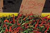 relish stock photography | California, Benicia, Chile peppers, Farmer