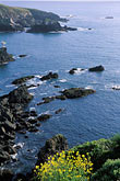 cliff stock photography | California, Mendocino County, Albion Cove, image id 5-640-95