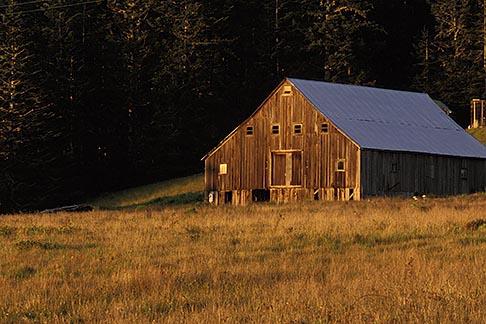 image 5-641-84 California, Mendocino County, Barn near Elk