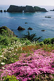 sea stock photography | California, Mendocino County, Elk, Harbor House garden, image id 5-643-33