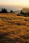 grass stock photography | California, Marin County, Bolinas from Mount Tamalpais, image id 5-790-64