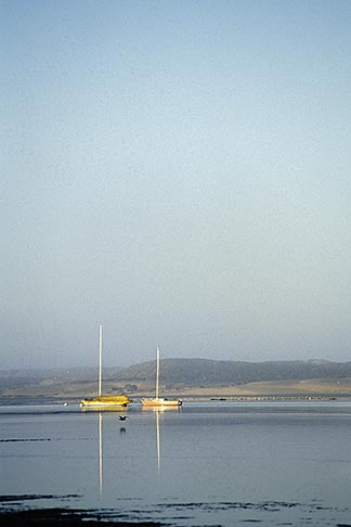 image 6-315-3 California, San Luis Obispo County, Morro Bay harbor, sailboats