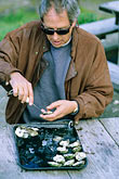 bill hemphill shucking oysters stock photography | California, Marshall, Hog Island Oyster Co., Bill Hemphill shucking oysters, image id 6-421-46