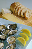 hog island oysters and sonoma bread and cheeses stock photography | California, Marshall, Hog Island Oysters and Sonoma bread and cheeses, image id 6-422-42