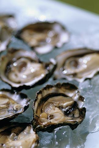 image 6-422-54 California, Marshall, Hog Island Oysters