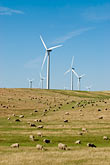 solano county stock photography | California, Solano County, Wind Turbines on hillside, image id 6-462-1350
