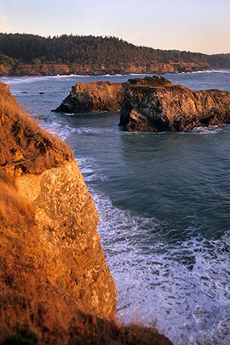 image 6-485-98 California, Mendocino , Mendocino Headlands State Park, Coastal bluffs