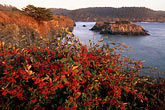 mendocino stock photography | California, Mendocino , Mendocino Headlands State Park, Coastal bluffs, image id 6-486-14