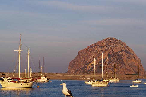 image 9-609-27 California, San Luis Obispo County, Fishing boats and Morro Rock, Morro Bay