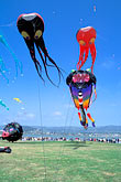 blue sky stock photography | California, Berkeley, Kite Festival, image id S1-15-1