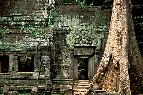 image 0-401-25 Cambodia, Angkor Wat, Ta Prohm
