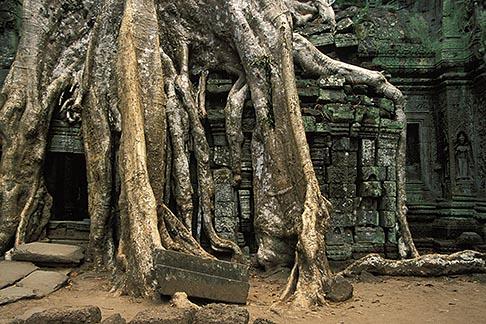 image S3-207-15 Cambodia, Siem Reap, Ta Prohm