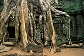 antiquity stock photography | Cambodia, Siem Reap, Ta Prohm, image id S3-207-15