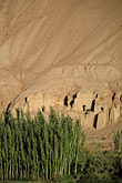 tree stock photography | China, Turpan, Shengjinkou Thousand Buddha Caves, image id 4-398-9