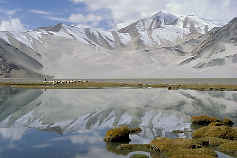 4-432-24 stock photo of China, Pamirs, Tajik shepherd and sheep by lakeside