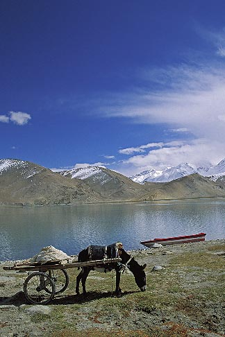 image 4-439-2 China, Pamirs, Karakul Lake, at the foot of Mustagh Ata
