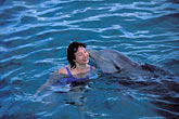 together stock photography | Cura�ao, Willemstad, Dolphin Academy, Cura�ao Sea Aquarium, image id 3-432-13