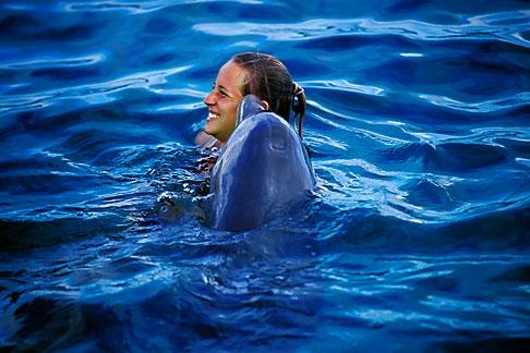 image 3-432-15 Curacao, Willemstad, Dolphin Academy, Curacao Sea Aquarium