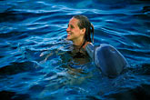 together stock photography | Cura�ao, Willemstad, Dolphin Academy, Cura�ao Sea Aquarium, image id 3-432-16