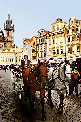 image 4-960-45 Czech Republic, Prague, Old Town Square, horse and carriage