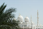 palm stock photography | United Arab Emirates, Abu Dhabi, Sheikh Zayed Mosque, image id 8-730-1750