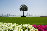 sharjah stock photography | United Arab Emirates, Sharjah, Harbor and City Skyline, flowers in foreground, image id 8-730-293