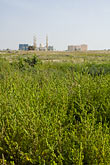distance stock photography | United Arab Emirates, Umm al-Quwain , Mosque and grassy field, image id 8-730-361