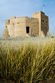 grass stock photography | United Arab Emirates, Fujairah, Fujairah Fort, built in 1670, oldest fort in the Emirates, image id 8-730-417