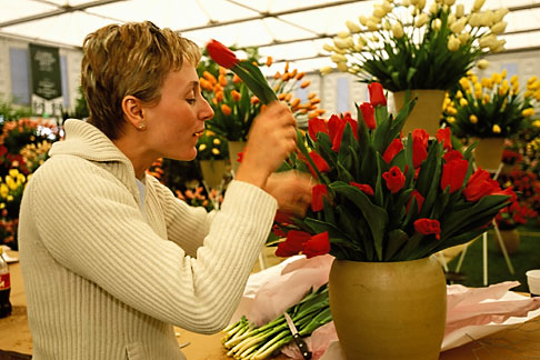 image 3-750-11 England, Chelsea Flower Show, Blooms Bulbs, Kelly Milne arranging tulips