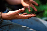 one hand stock photography | England, Chelsea Flower Show, Hands of a landscaper, image id 3-750-17