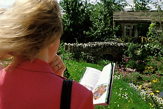 3-754-26  stock photo of England, Chelsea Flower Show, Yorkshire Forward Garden, Woman viewing garden