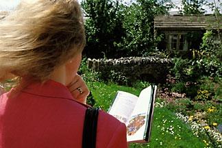 3-754-26  stock photo of England, Chelsea Flower Show, Yorkshire Forward Garden, Woman viewing garden