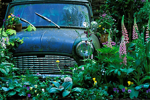 3-755-91  stock photo of England, Chelsea Flower Show, The Mini Garden by Sulis Garden Design