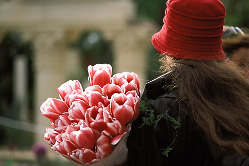 image 3-757-16 England, Chelsea Flower Show, Anna Greig leaves the show with an armful of tulips